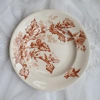 Longwy fajansz tányér