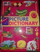 Picture dictionary, angol képes szótár gyerekeknek, ajánljon!