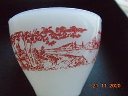 Körpanorámás mintával a csészén,virág mintával az alátéten,üveg porcelán készlett