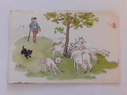 Régi képeslap 1954 bárány kutya juhász rajzos levelezőlap
