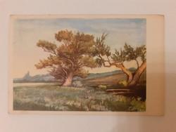 Régi képeslap 1954 tájkép litográfia levelezőlap