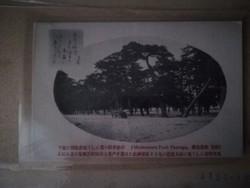 Japán képeslap