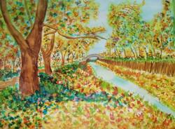 Varga Ádám - Őszi Patak - akvarell - 50x70