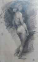 GYÖNYÖRŰ AKTRAJZ, GRAFITTAL 42x26 cm, papíron