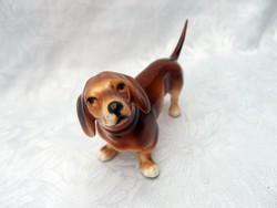 ROYAL DUX  kutya