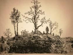 Gross Arnold ritka, korai, fekete-fehér rézkarca: Madarak kertje