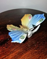 Ens Szines Porcelán Pillangó