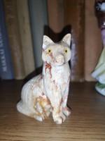 Márvány cica
