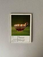 Tevan Margit könyv