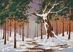 A téli völgy őrzője