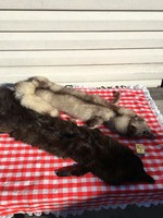 2 darab Régi Kisállat prém szőrme bunda róka ezüstróka állat fali dísz