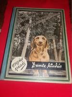Antik ifjúsái regény Svend Fleurion Snipp a nagy vadász ( egy dakszli története) képek szerint DANTE