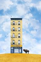 Moira Risen: Seregély Co. Kortárs szignált fine art nyomat Sárga ház NY építészet préri bölény táj