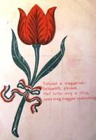 Képeslap,magyar szabadságharc 1848