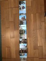 Gdansk városa leporelló képeslap