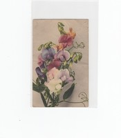 Névnapi képeslap 1910