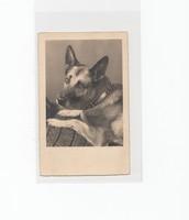 Művészi képeslap postatiszta