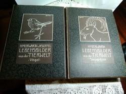 Antik német vadászati könyvek / gótbetűs /