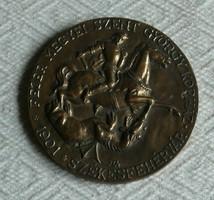 Jelzett bronz plakett - Fejér Megyei Szent György Kórház, Székesfehérvár, 1901