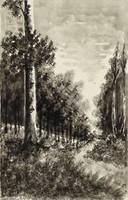 1C888 Ditrói Puskás Ede : Erdőbelső 1933