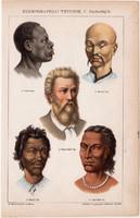 Ethnographiai typusok I., emberfajok, litográfia 1892, színes nyomat, magyar, Athenaeum, népfaj