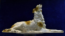 Porcelán orosz agár kutya, borzoj eladó