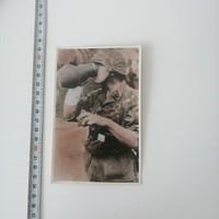 Elit katona fotó