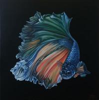 Betta hal, olajfestmény, 80 x 80 cm
