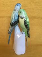 Hollóházi papagájpár, papagájok