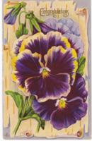 Virágos gratuláló képeslap