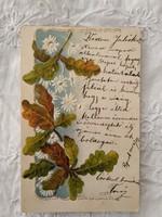 Antik, litho/litográfiás dombornyomott képeslap//üdvözlőlap, virágok, tölgyfa levél 1901