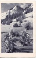Svájc képeslap 1917