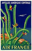 Vintage utazási plakát reprint Antillák kaktusz kolibri papagáj színes tengerpart ég repülő madarak