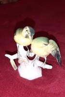 Volkstedt madár pár, cinegék