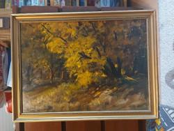 Solymosné Göldner Márta: Öreg erdei fa, festmény, olaj, farost, 50x70+ gyönyörű, eredeti kerete