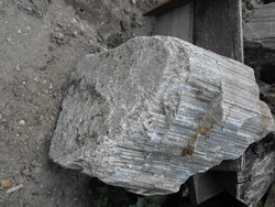 Rarity! A huge more than 1000-year-old set of petrified wood logs stone wood rock formation