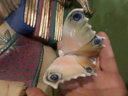 Ens Volkstedt pillangó , szép állapotban . Az egyik szárnya nem csücskös , de a máz sértetlen rajta