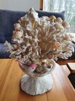 Ritka korall dísztárgy Bahreinből
