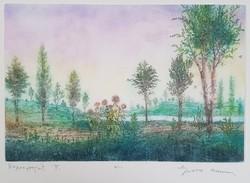 Gross Arnold -  Napraforgók II. 23 x 34 cm színezett rézkarc