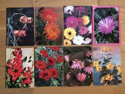 Virágos képeslapok  - ár / db        -3 cs .