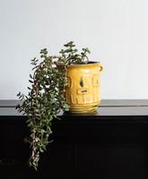 Böröcz Márta retro kerámia kaspó - sárga fa vagy arc mintás virágtartó - iparművész munka