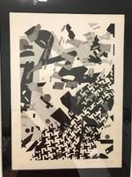 SZŐNYI KRISZTINA (1964 - ) Algráfia szitanyomat 1987. kerettel mérete:39 x 54 cm.