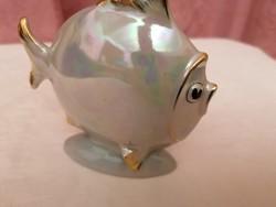 Lüsztermázas Drasche hal