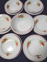 Zsolnay mikulásvirág mintás tányérkészlet, tállal és fűszertartóval