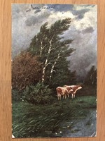 Antique postcard - 1906