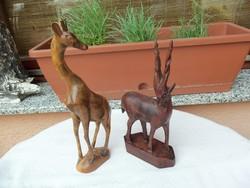 Chamois and giraffe !!